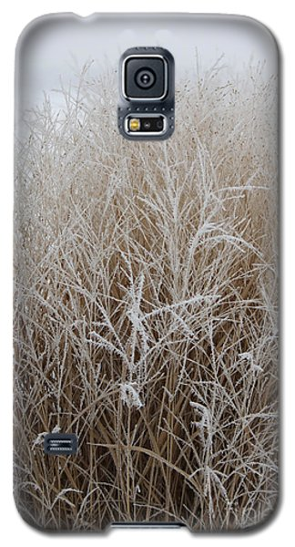 Frozen Grass Galaxy S5 Case