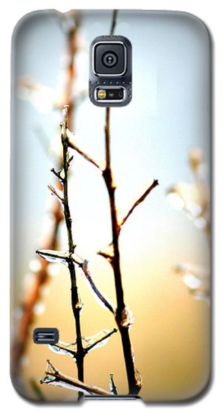 Frozen In Light Galaxy S5 Case by Faith Williams