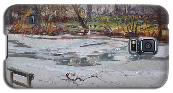 Icy Galaxy S5 Case - Frozen Pond by Ylli Haruni