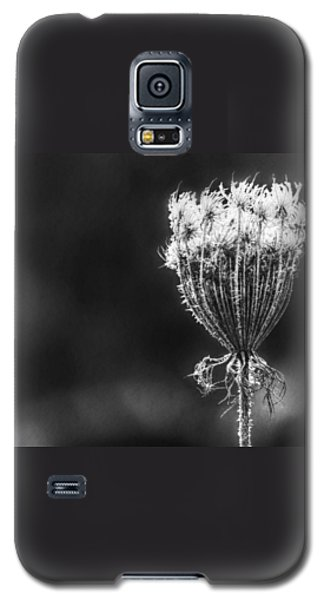 Galaxy S5 Case featuring the photograph Frozen Queen by Melanie Lankford Photography