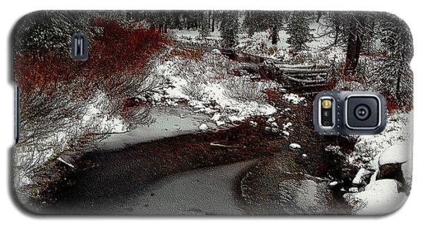 Frozen Stream II Galaxy S5 Case