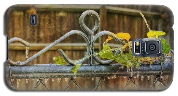Frozen To The Gate Galaxy S5 Case