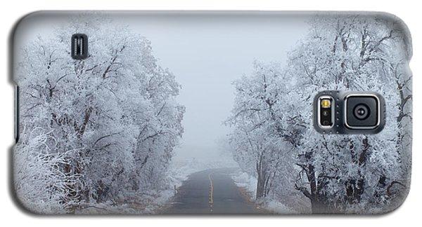 Ice Galaxy S5 Case - Frozen Trees by Darren  White
