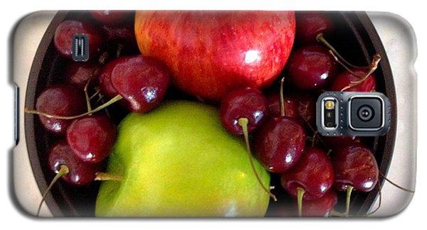 Fruit Bowl Galaxy S5 Case by Brenda Pressnall