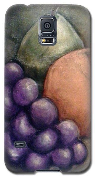 Fruit Of Spirit Galaxy S5 Case