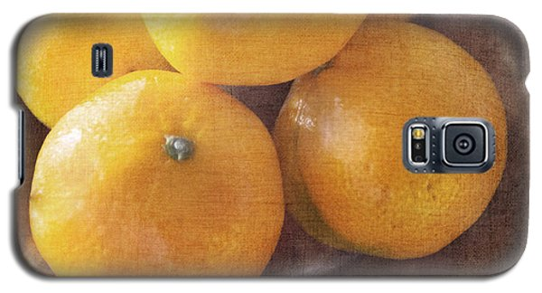 Fruit Still Life Oranges And Antique Silver Galaxy S5 Case