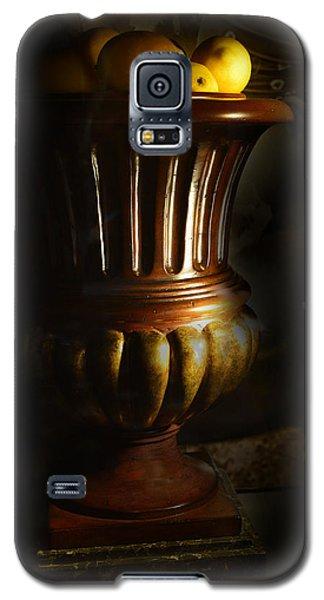 Fruitful Galaxy S5 Case