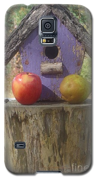 Fruity Home? Galaxy S5 Case