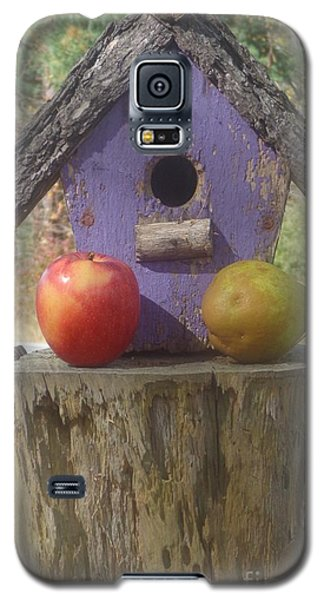 Fruity Home? Galaxy S5 Case