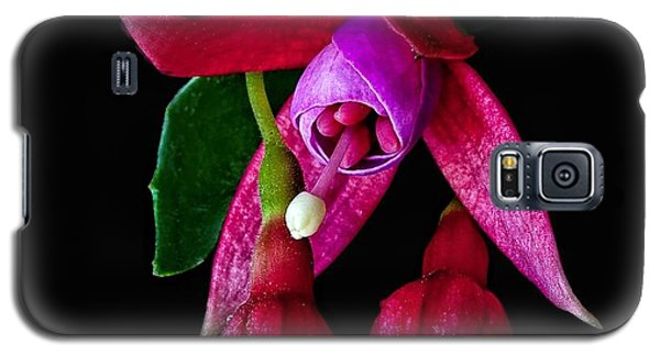 Galaxy S5 Case featuring the photograph Fuchsia by Shirley Mangini