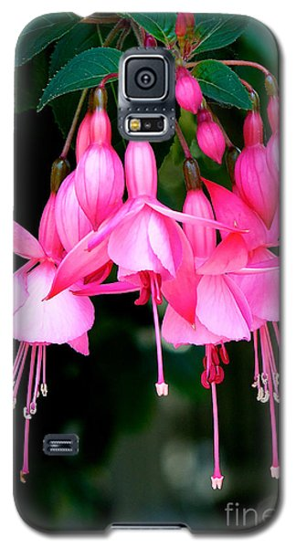 Galaxy S5 Case featuring the photograph Fuchsia  by Vinnie Oakes