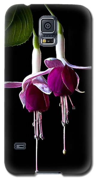 Fuchsias Galaxy S5 Case