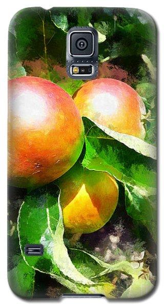 Fugly Manor Apples Galaxy S5 Case