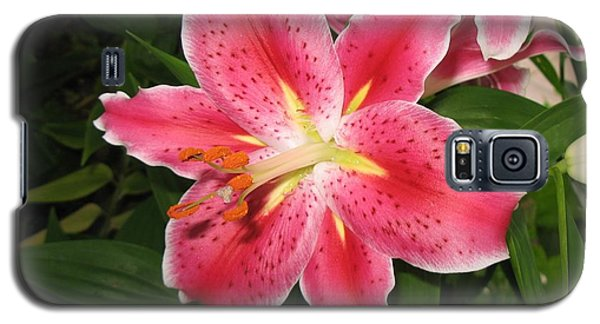 Galaxy S5 Case featuring the photograph Fukuoka Lily by Carol Sweetwood