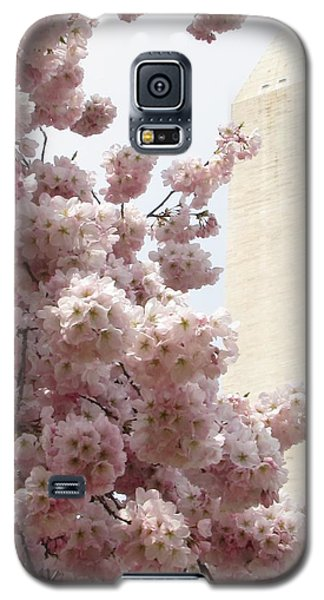 Full Bloom In Dc Galaxy S5 Case by Jennifer Wheatley Wolf