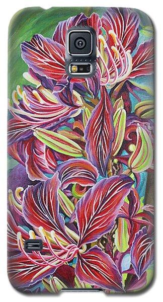 Full Blossom Orchid Tree Galaxy S5 Case