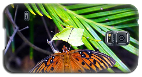 Galaxy S5 Case featuring the photograph Full Glory by Tom DiFrancesca