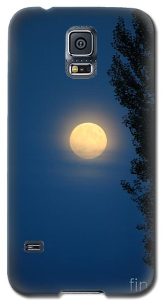 Galaxy S5 Case featuring the photograph Full Moon - Lake Washington by Amanda Holmes Tzafrir