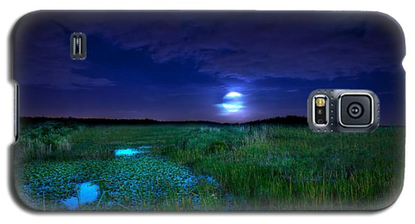 Full Moons And Fireflies Galaxy S5 Case