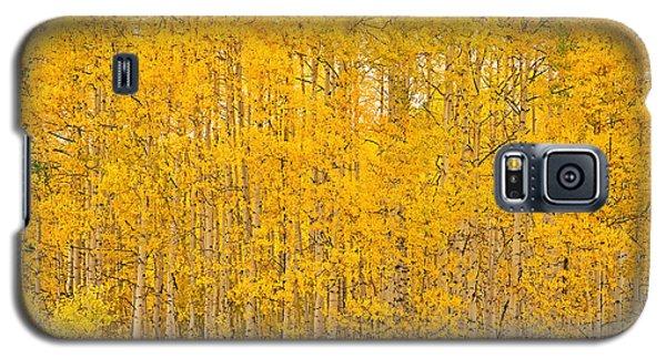 Fullness Of Gold Galaxy S5 Case