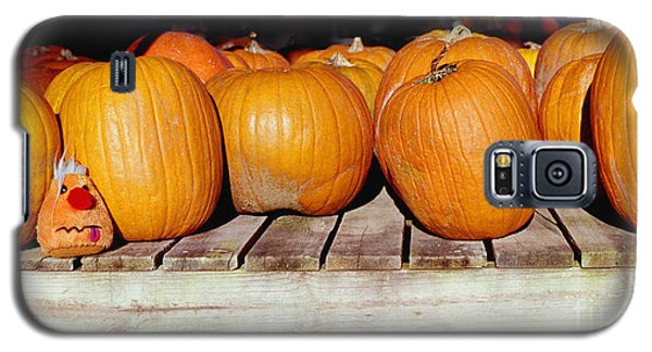 Galaxy S5 Case featuring the photograph Fun Pumpkin by Tom Brickhouse