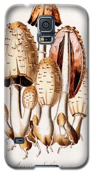 Fungi Galaxy S5 Case