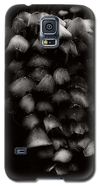 Fungi Galaxy S5 Case by Tim Nichols