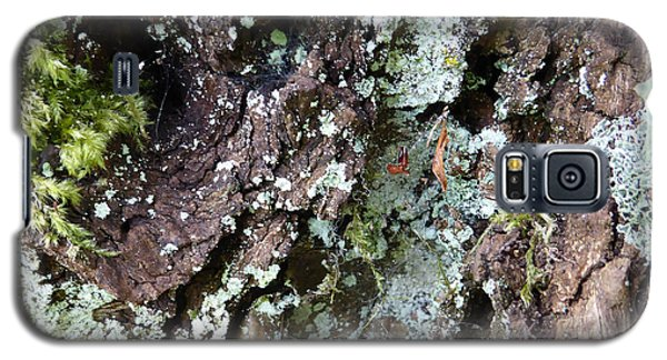 Galaxy S5 Case featuring the photograph Fungus Bark by Laurie Tsemak