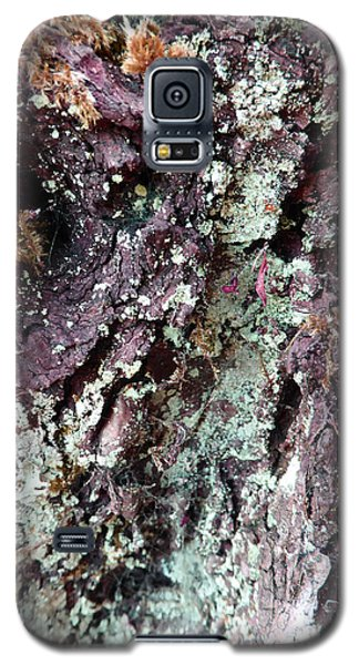 Galaxy S5 Case featuring the photograph Fungus Bark Purple by Laurie Tsemak