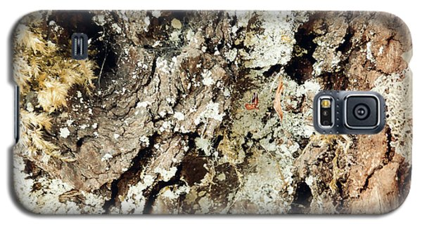Galaxy S5 Case featuring the photograph Fungus Bark Vintage by Laurie Tsemak