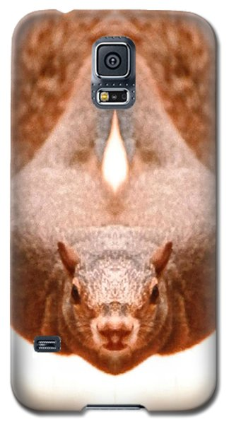 Flying Funky Brown Squirrel Galaxy S5 Case