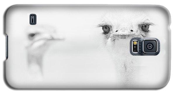 Funny Ostrich Galaxy S5 Case