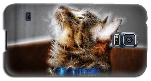 Fuzzy Friend Galaxy S5 Case