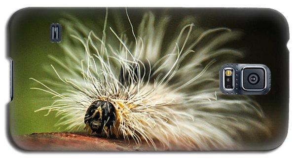 Fuzzy Was He Galaxy S5 Case
