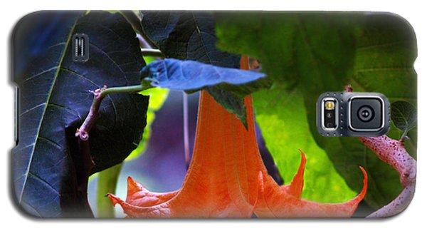 Gabriel Blow Your Horn Galaxy S5 Case