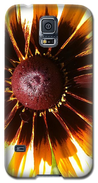 Galaxy S5 Case featuring the photograph Gaillardia by Gary Stamp