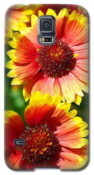 Galaxy S5 Case featuring the photograph Gaillardia2x by Vinnie Oakes