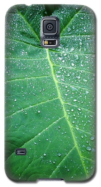 Galaxy Rain Galaxy S5 Case