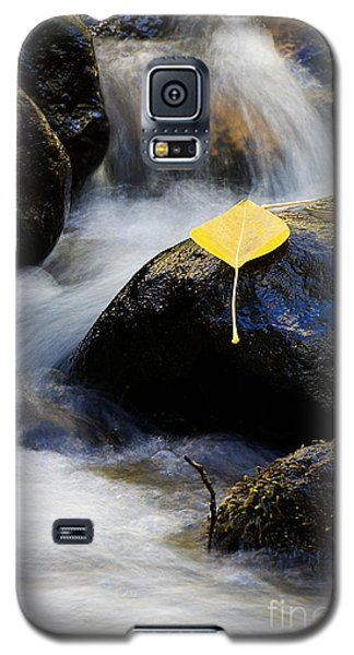 Galaxy S5 Case featuring the photograph Galena Creek Trail  by Vinnie Oakes