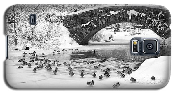 Galaxy S5 Case featuring the photograph Gapstow Bridge In Snow by Dave Beckerman