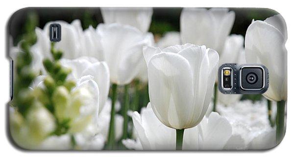 Garden Beauty Galaxy S5 Case by Jennifer Ancker