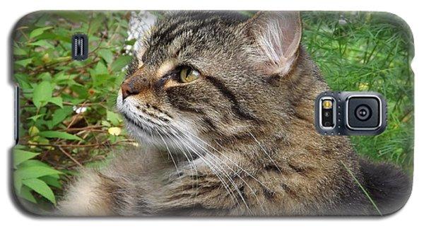 Garden Cat Galaxy S5 Case