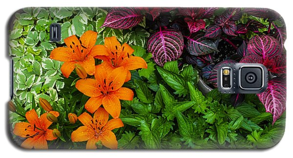 Galaxy S5 Case featuring the photograph Garden Colors by Phil Abrams