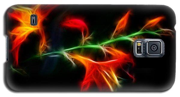 Garden Firecracker Galaxy S5 Case