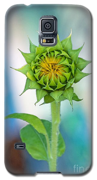 Galaxy S5 Case featuring the photograph Garden Of Many Colors by Gwyn Newcombe