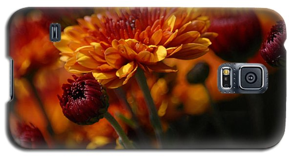 Galaxy S5 Case featuring the photograph Garden Party by Lena Wilhite