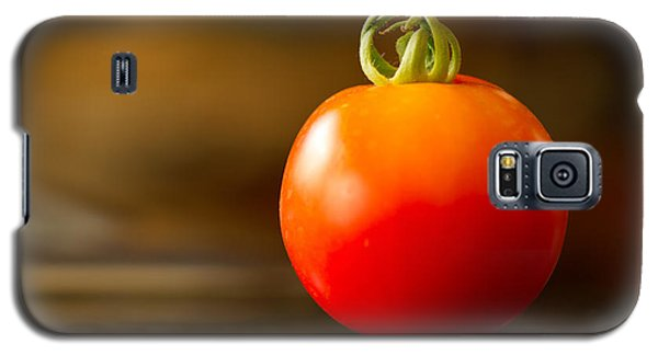 Garden Ripe Tomato Galaxy S5 Case by Randy Wood