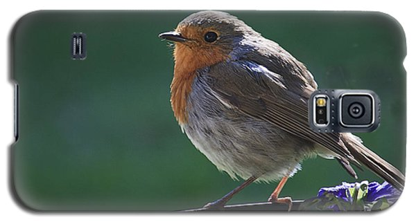 Galaxy S5 Case featuring the photograph Garden Robin by Shirley Mitchell