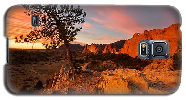 Galaxy S5 Case featuring the photograph Garden Sunrise by Ronda Kimbrow