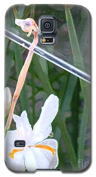 Garden Under Glass Galaxy S5 Case